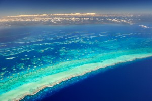 Ariel view of Belize's reef!