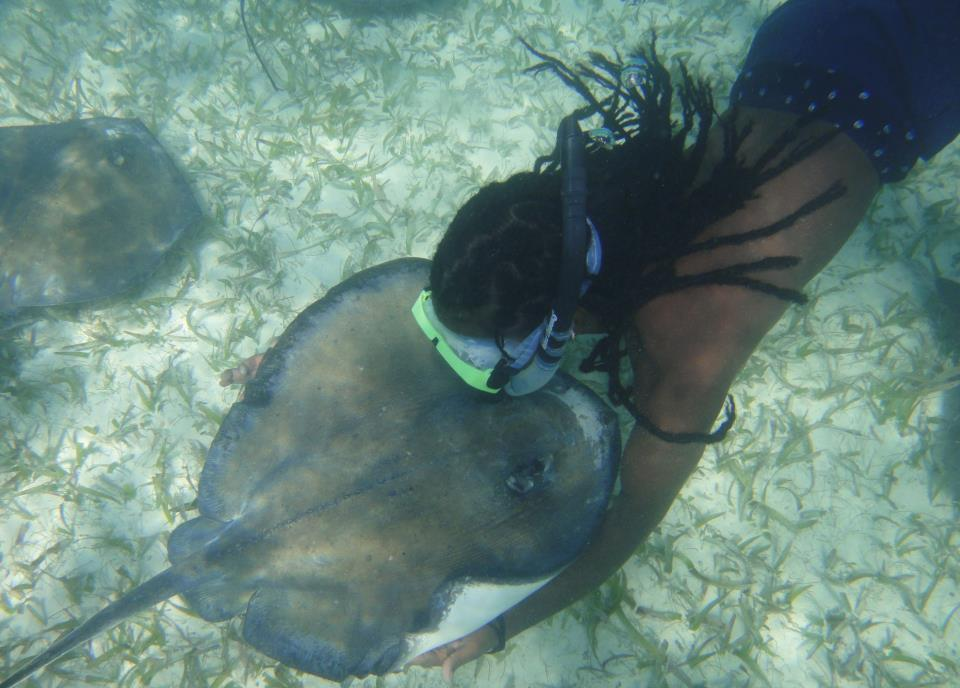 Ellis and Stingray