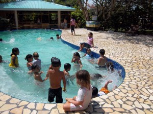 Black Orchid's swimming pool