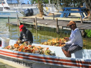 Eloy's boat filled with conch.