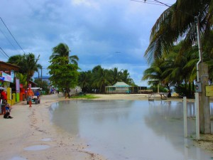 The newly created swimming pool beside the Palapa Garden