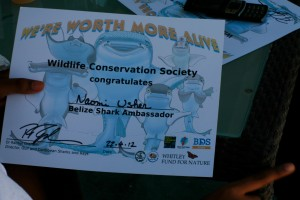 Certificate for Belize's Shark Ambassadors