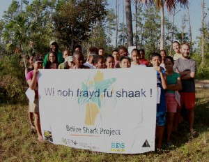 We are not afraid of sharks!!